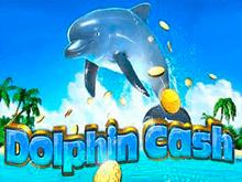 Обзор игрового автомата Dolphin Cash